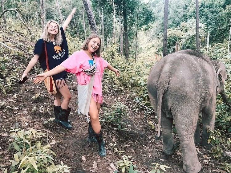 freie-elefanten